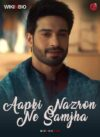 Aapki Nazron Ne Samjha tv serial episodes hero heroine cast story wiki episodes videos