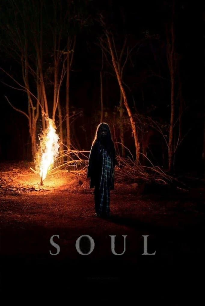 Watch Soul online now on Netflix cast review release date hero heroine hit or flop